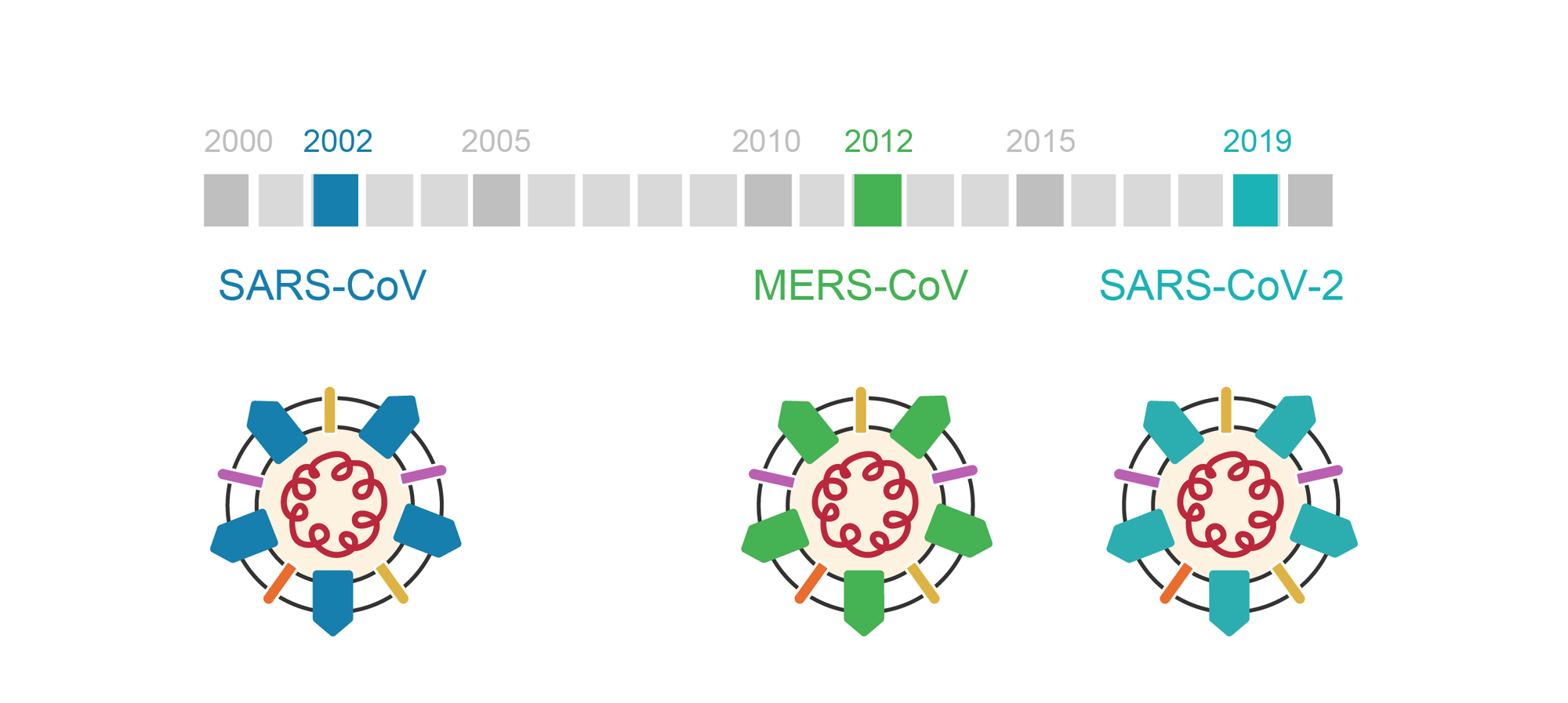 Timeline of coronavirus outbreaks from 2000 to 2020. 2002 was SARS-CoV. 2012 was MERS-CoV. 2019 was SARS-CoV-2. Illustration.