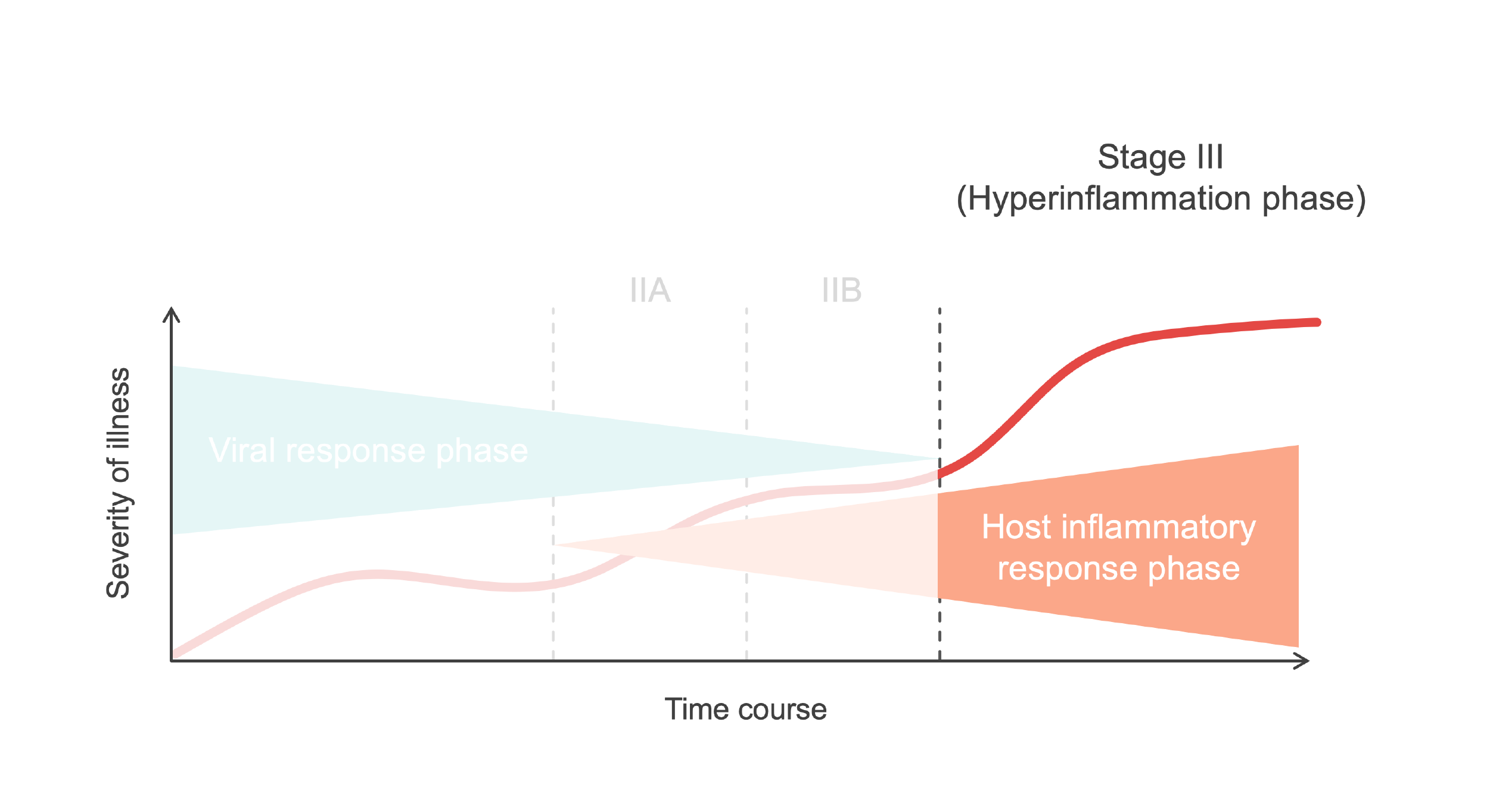 Graph highlighting Stage III of a COVID-19 infection.