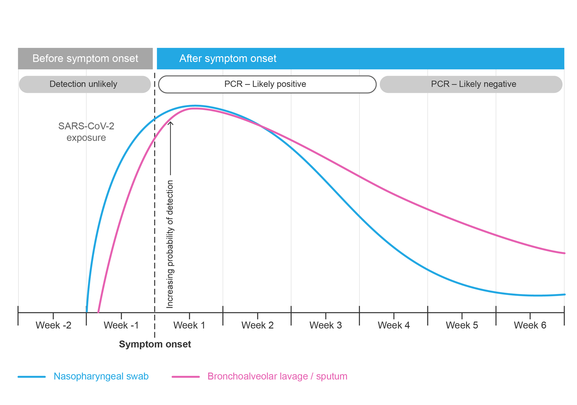 Probability of detecting SARS-CoV-2 with RT-PCR using a nasopharyngeal swab or bronchoalveolar lavage or sputum versus time since symptom onset. Graph.