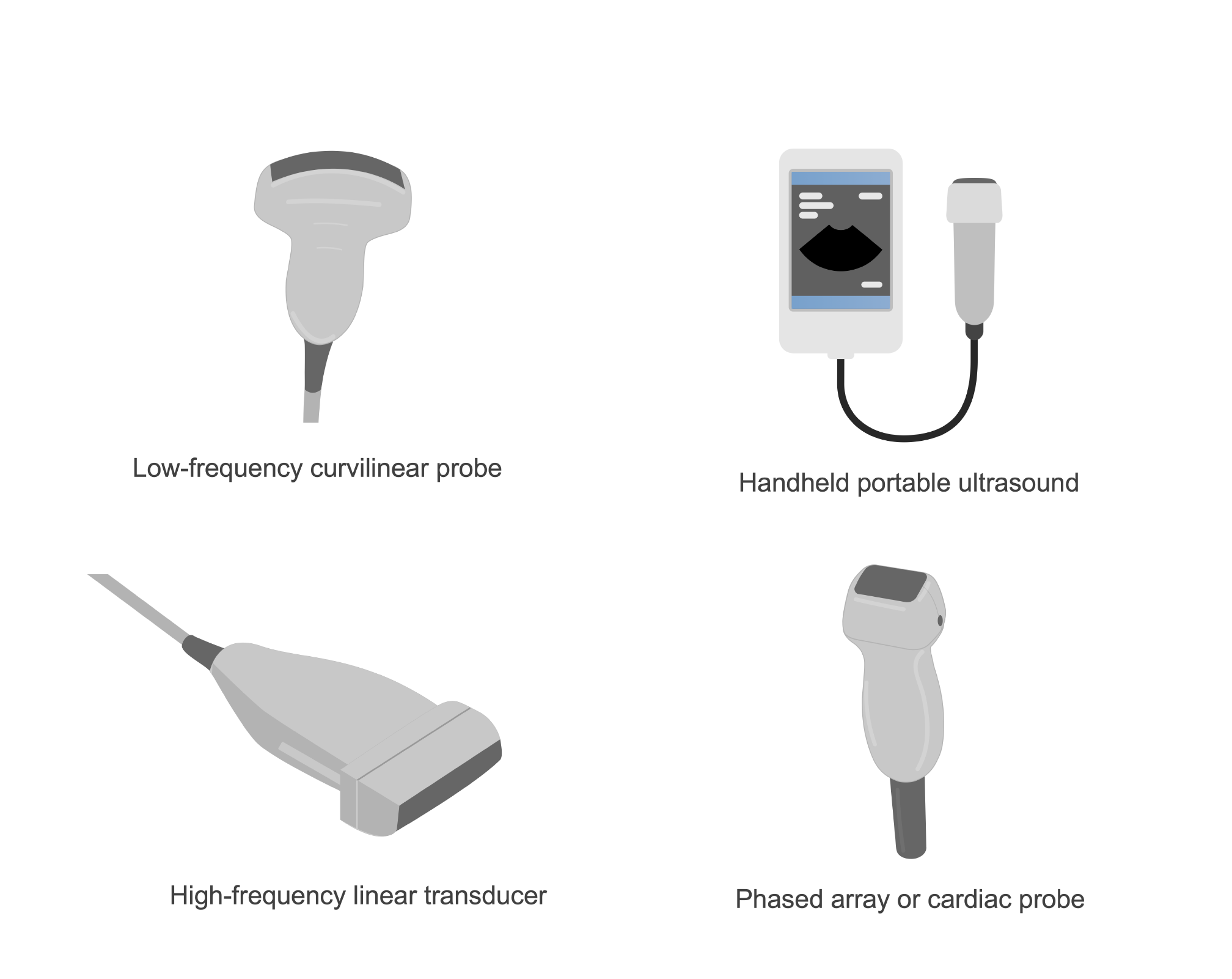 Four ultrasound probes low-frequency curvilinear probe, a handheld portable ultrasound, high-frequency linear transducer, and phased array or cardiac probe. Illustration.